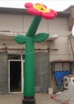 Best Quality Flower Shape Dancer Tube Inflatable Air Man